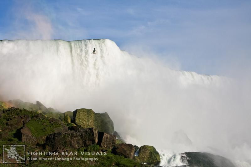 Niagara2009_011