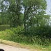 """Hwy 67 between Lewis Bridge and Clark Bridges <br> Stopping at Riverlands Migratory Bird Sanctuary which is closed <br> St. Charles County  <br> 2019-06-01 13:53:03-05:00 <br>  <span class=""""noShowSmart""""> <a href=""""/MyKeywords/Bird-Videos/n-gF9bt/i-7PTcv7R/A""""> <span style=""""color:yellow"""">Click here to open video in lightbox/full screen</span></a> </span>  <span class=""""noShowGallery""""> <a href=""""/Birds/2019-Birding/Birding-2019-June/2019-06-01-Riverlands-Migratory-Bird-Sanctuary/i-7PTcv7R/A""""> <span style=""""color:yellow"""">Click here to open video in lightbox/full screen</span></a> </span>"""