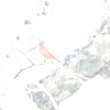 """Painted Bunting <br> Yarnell Road in Fenton Mo.  <br> St. Louis County <br> 2019-06-06 13:01:22 <br>  <span class=""""noShowSmart""""> <a href=""""/MyKeywords/Bird-Videos/n-gF9bt/i-8rdxmVV/A""""> <span style=""""color:yellow"""">Click here to open video in lightbox/full screen</span></a> </span>  <span class=""""noShowGallery""""> <a href=""""/Birds/2019-Birding/Birding-2019-June/2019-06-06-Painted-Bunting/i-8rdxmVV/A""""> <span style=""""color:yellow"""">Click here to open video in lightbox/full screen</span></a> </span>"""
