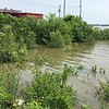 """Riverlands Way before gas station looking at Teal Pond <br> Least Tern Barge in distance <br> Riverlands Migratory Bird Sanctuary <br> St. Charles County  <br> 2019-06-01 13:56:12-05:00 <br>  <span class=""""noShowSmart""""> <a href=""""/MyKeywords/Bird-Videos/n-gF9bt/i-rbKt4Cb/A""""> <span style=""""color:yellow"""">Click here to open video in lightbox/full screen</span></a> </span>  <span class=""""noShowGallery""""> <a href=""""/Birds/2019-Birding/Birding-2019-June/2019-06-01-Riverlands-Migratory-Bird-Sanctuary/i-rbKt4Cb/A""""> <span style=""""color:yellow"""">Click here to open video in lightbox/full screen</span></a> </span>"""