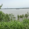 "Riverlands Way before gas station looking at Teal Pond <br> Least Tern Barge in distance <br> Riverlands Migratory Bird Sanctuary <br> St. Charles County  <br> 2019-06-01 13:56:12-05:00 <br>  <span class=""noShowSmart""> <a href=""/MyKeywords/Bird-Videos/n-gF9bt/i-rhFvDQ2/A""> <span style=""color:yellow"">Click here to open video in lightbox/full screen</span></a> </span>  <span class=""noShowGallery""> <a href=""/Birds/2019-Birding/Birding-2019-June/2019-06-01-Riverlands-Migratory-Bird-Sanctuary/i-rhFvDQ2/A""> <span style=""color:yellow"">Click here to open video in lightbox/full screen</span></a> </span>"