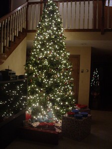 All the gifts look so pretty at night with only the tree to illuminate them.