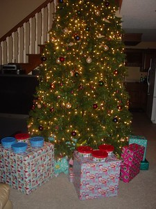 The presents lay under the tree for the little Children the next morning. No one is really sure how this picture got on the camera. Apparently Santa stole Mom's camera...