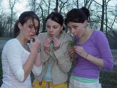 "Some teens experiment with ""grass"" and ""weed"" at this age. Our girls...well they just play with it."