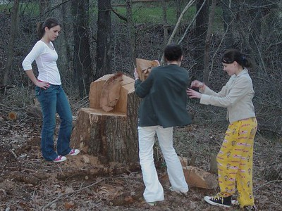 Selecting the perfect hunk of wood to be yours is a delicate process that the girls took very seriously.