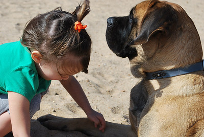 Buddies in the sand.