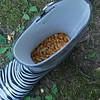 Shiloh filled Mama's rain boot with corn!