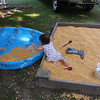 She is methodically trying to transfer all the corn to her swimming pool.