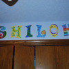 Big sister Sam and her friend Ally painted the letters over the closet door.