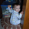 Climbing on things is her favorite thing to do...here she has climbed up onto the hearth.