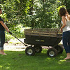 Nicky and Sam were on yard duty, filling holes dug by Molly.