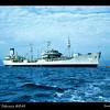 Moored in Sasebo Harbor in August 1954.