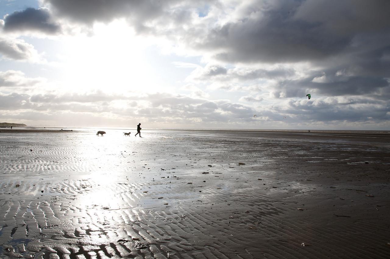 Southport Beach - Dog walking