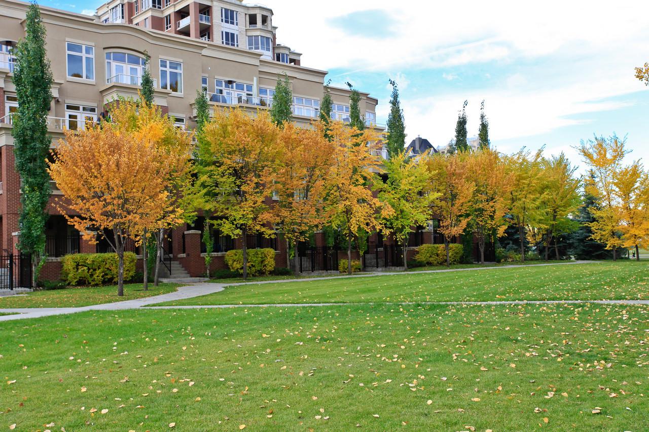 Calgary Prince's Park Fall 2010-15