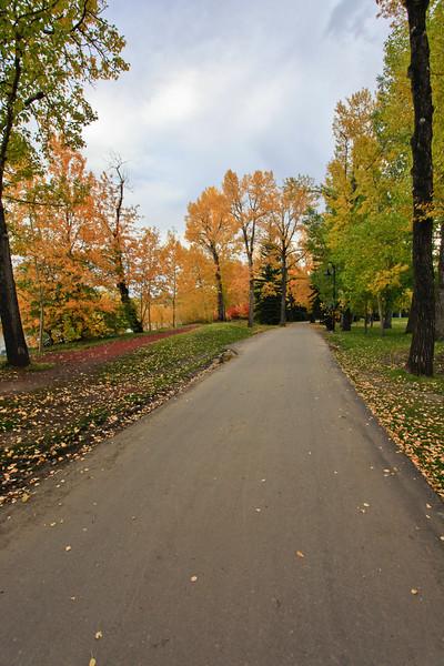 Calgary Prince's Park Fall 2010-4