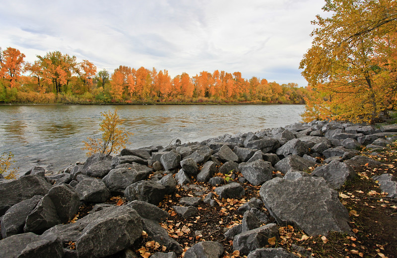 Calgary Prince's Park Fall 2010-3