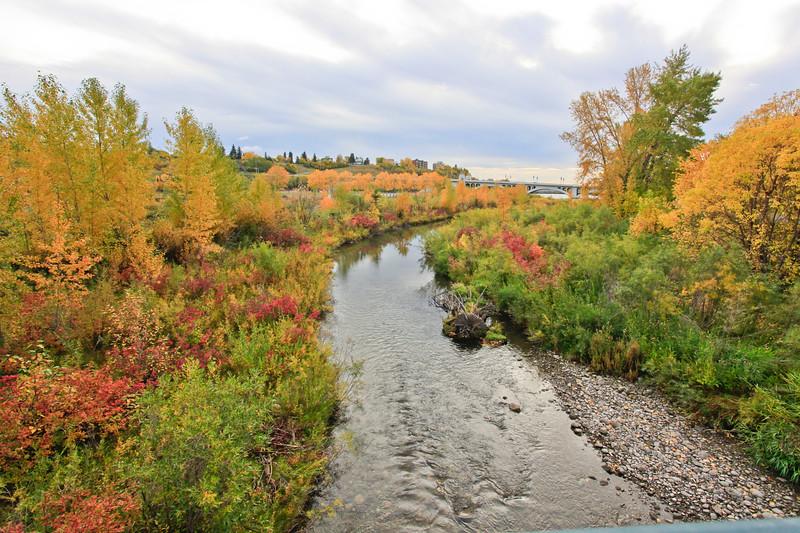 Calgary Prince's Park Fall 2010-11