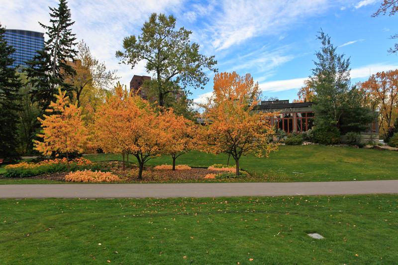 Calgary Prince's Park Fall 2010-7