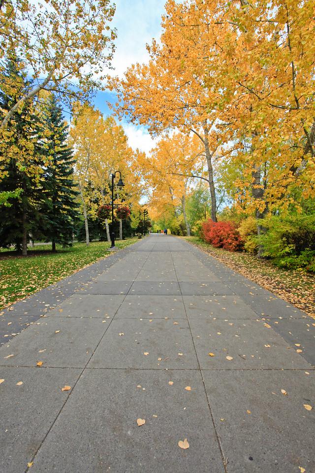 Calgary Prince's Park Fall 2010-14