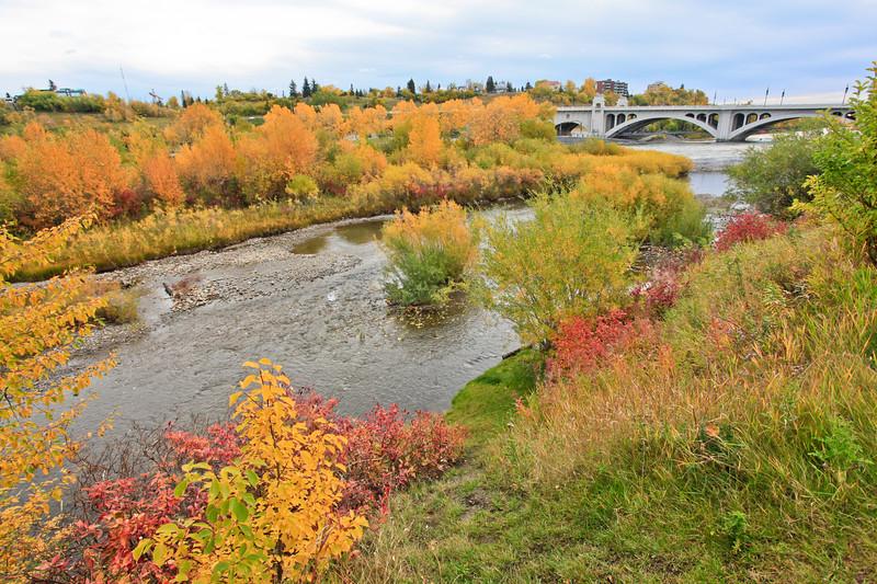 Calgary Prince's Park Fall 2010-12