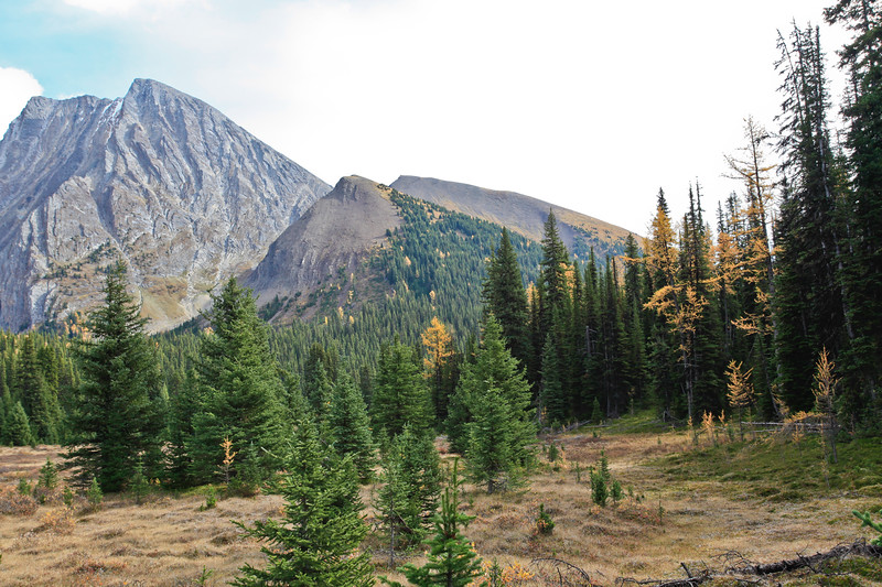 Chester Lake Trail Kananaskis-6