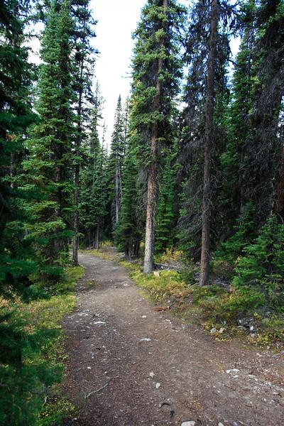 Chester Lake Trail Kananaskis-2