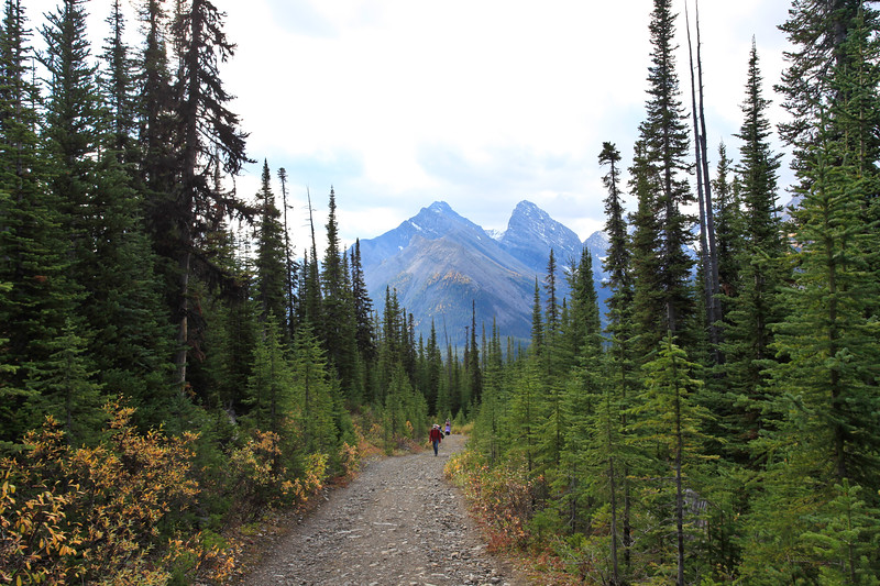 Chester Lake Trail Kananaskis