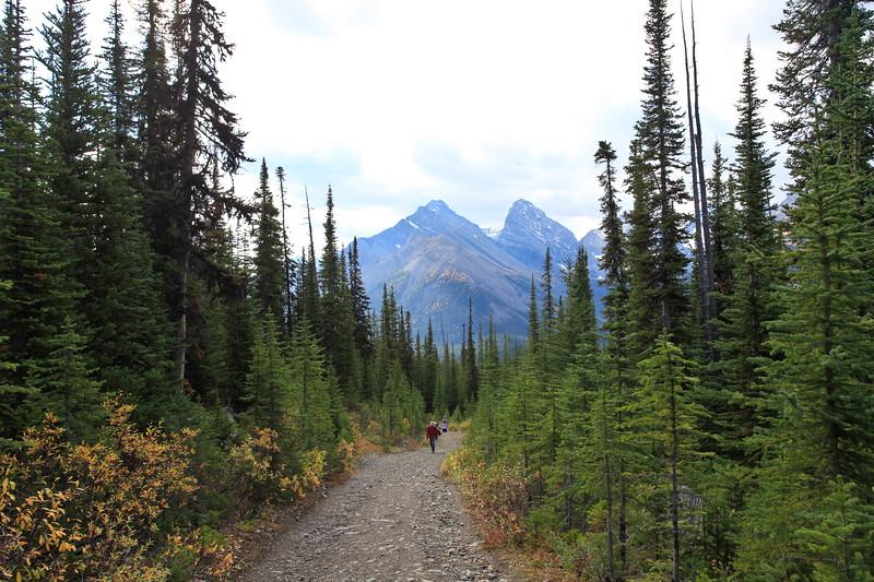 Chester Lake Trail Kananaskis-1