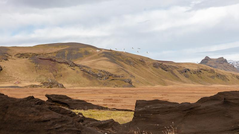 Iceland-135