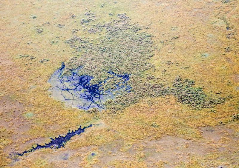 Maasai Mara, Kenya-387
