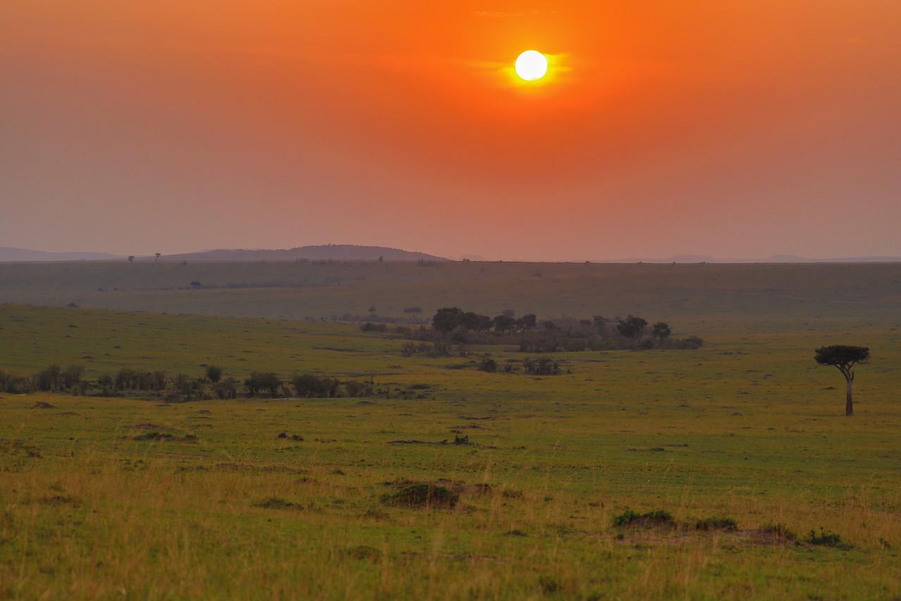 Maasai Mara, Kenya-415