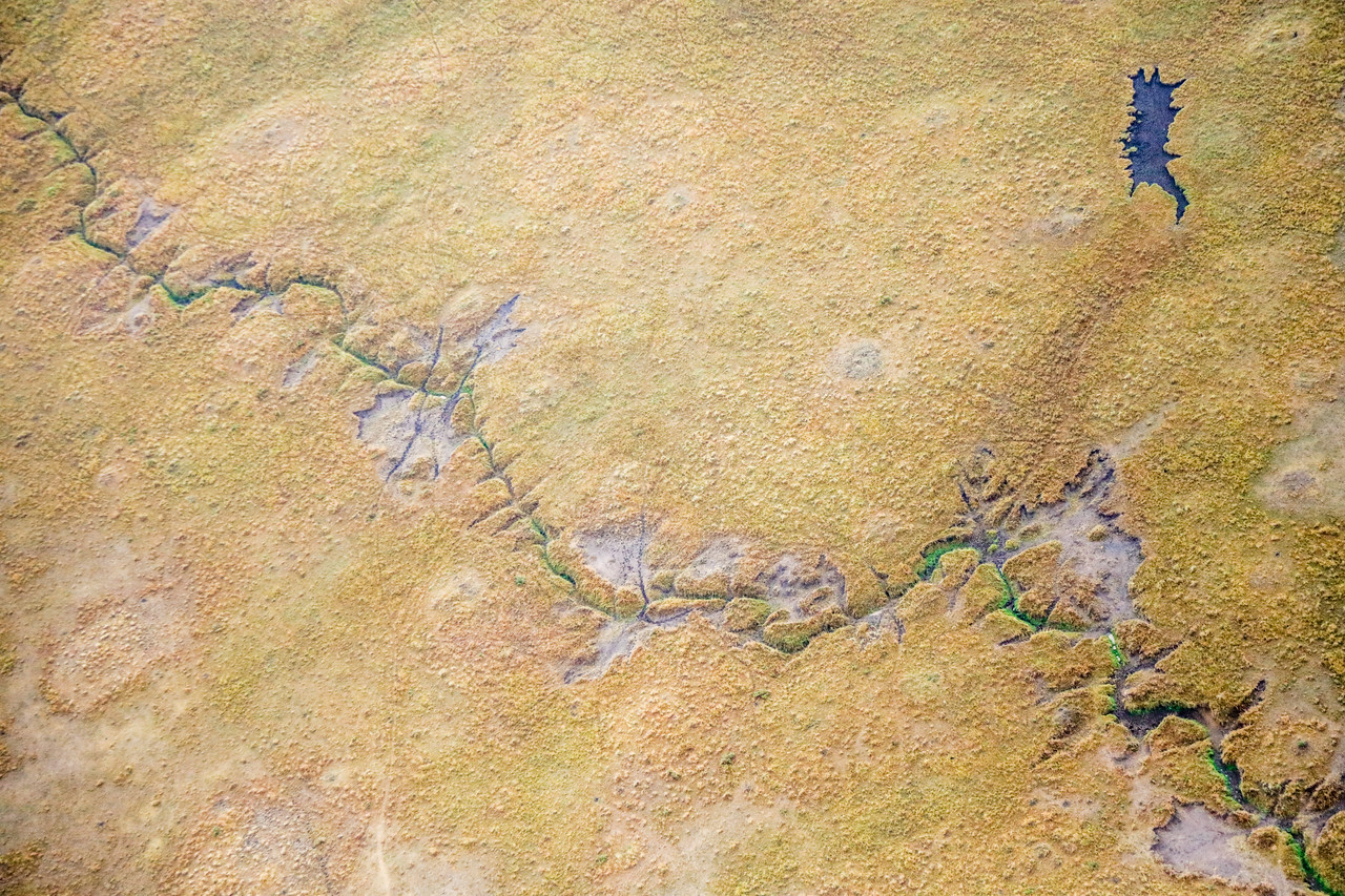 Maasai Mara, Kenya-384