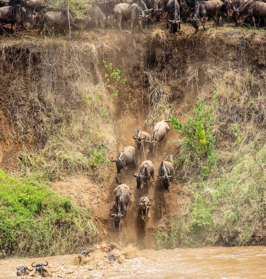 Maasai Mara, Kenya-400