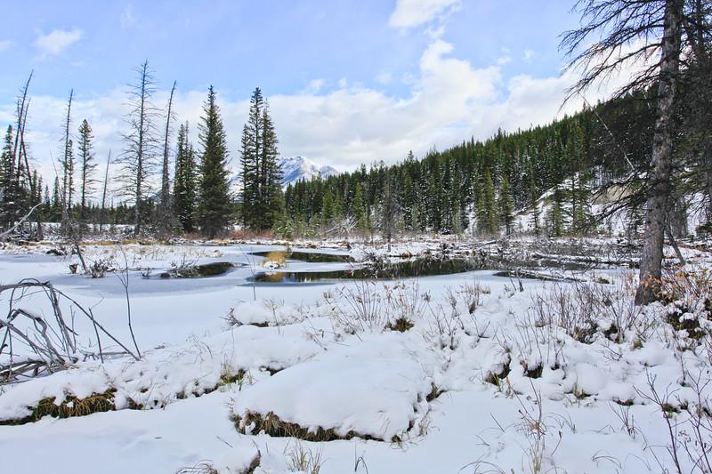 Mt. Lorette Ponds-10