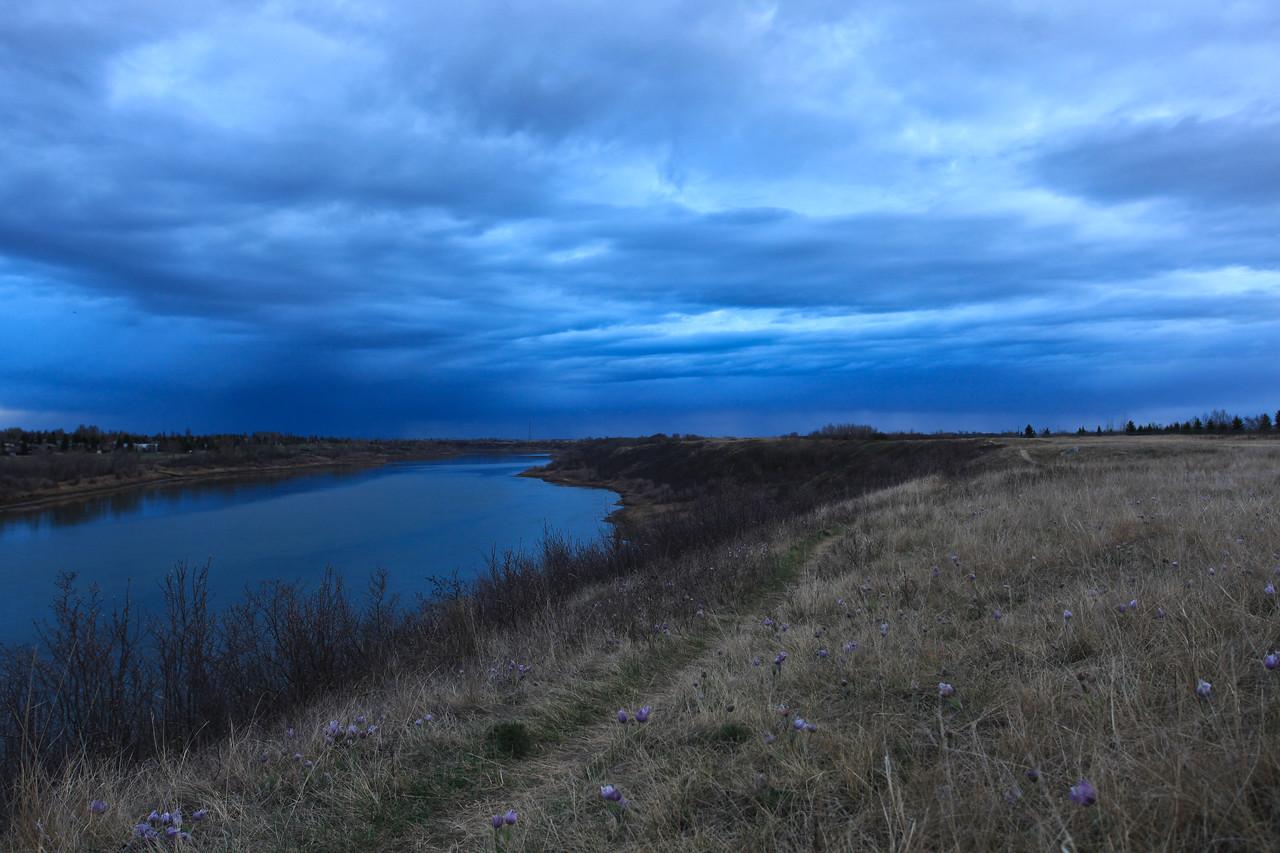 Spring Saskatoon 2009-4