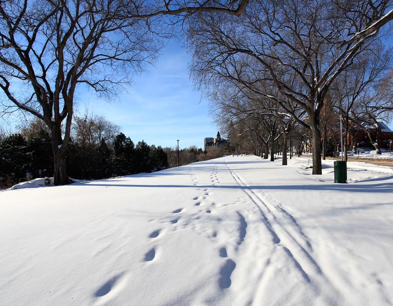 Saskatoon Winter 2009-3