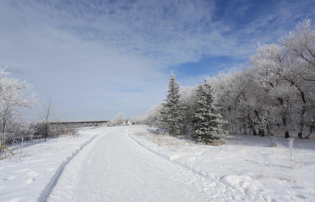 Saskatoon Winter 2009-42