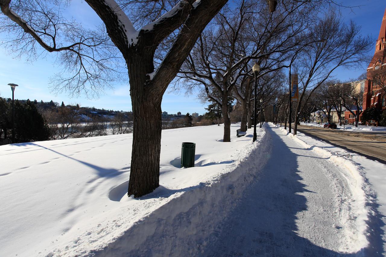 Saskatoon Winter 2009-4