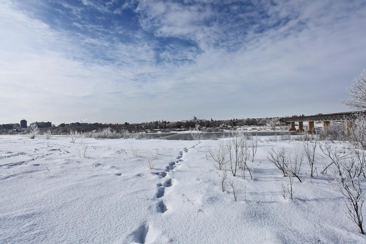 Saskatoon Winter 2009-37