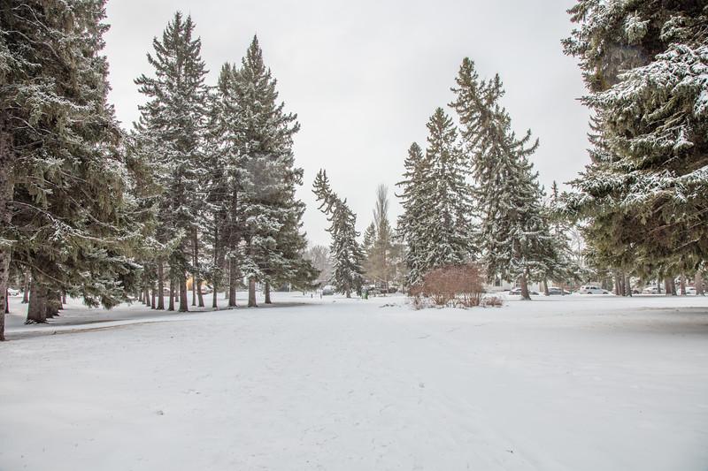 Saskatoon Winter 2016-17