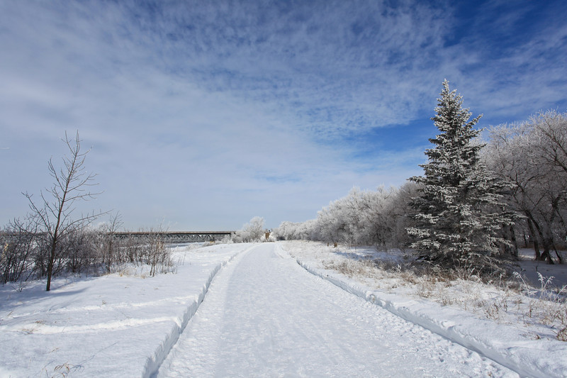 Saskatoon Winter 2009-43