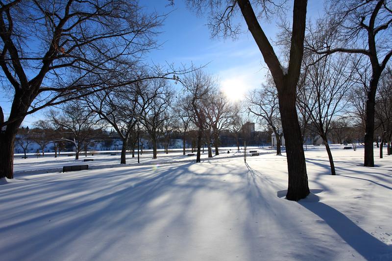 Saskatoon Winter 2009-6