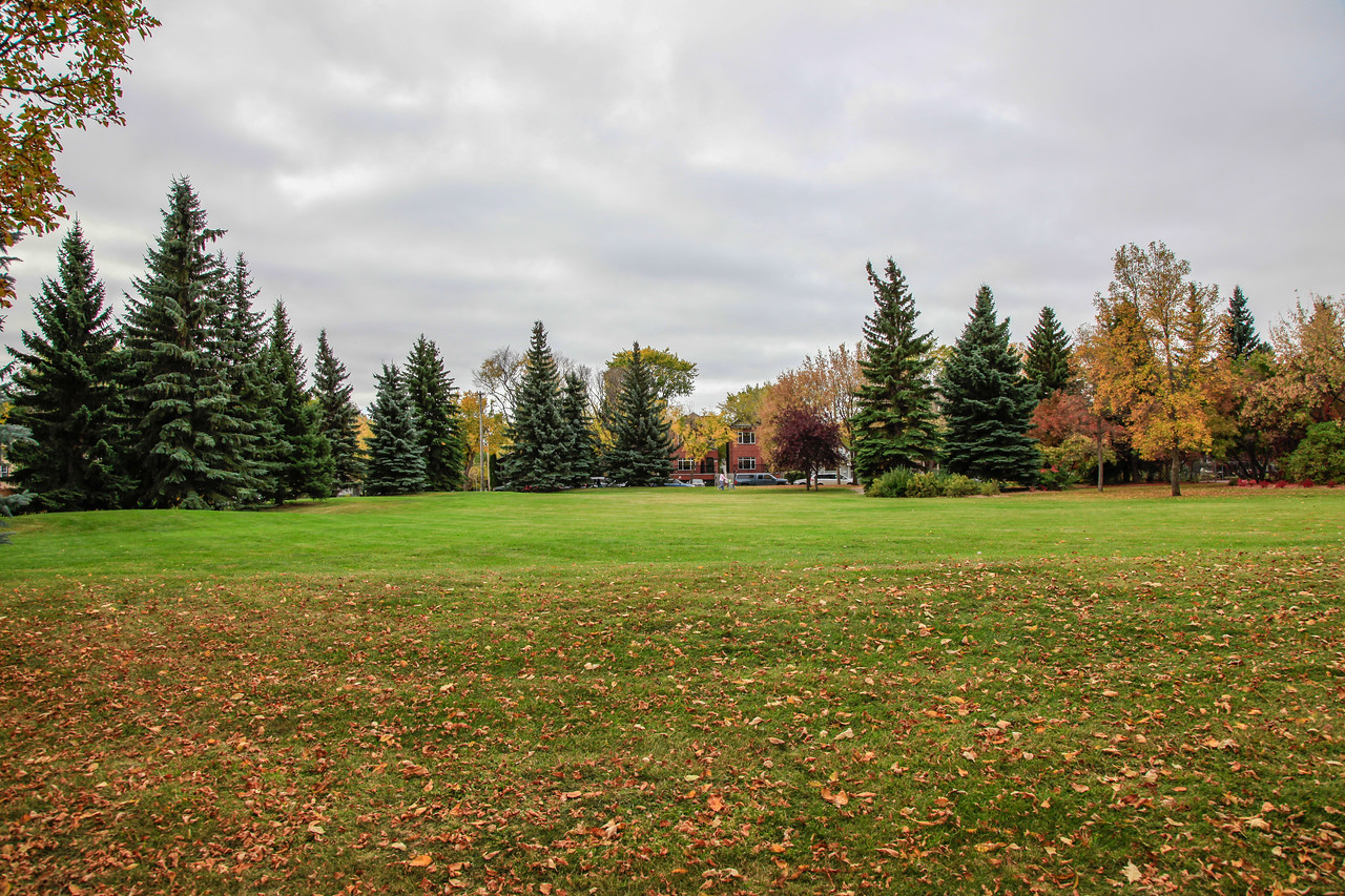Saskatoon Fall 2014-7