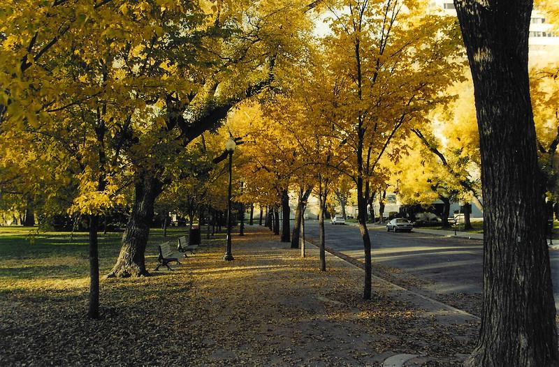 Saskatoon Fall 2004-2
