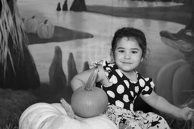 Pumpkin Patch 025