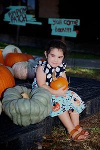 Pumpkin Patch 007