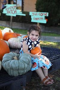Pumpkin Patch 006
