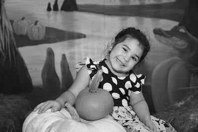 Pumpkin Patch 027