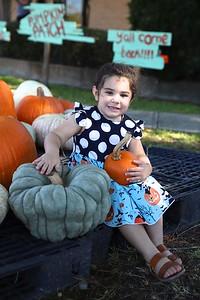 Pumpkin Patch 004
