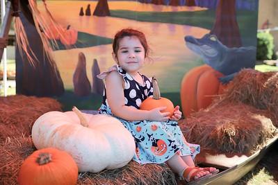 Pumpkin Patch 020